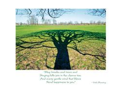Tree Of Life Irish Birthday Card