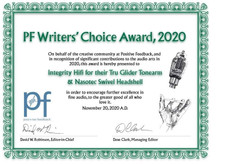 The 17th Annual Positive Feedback Writers' Choice Awards for 2020