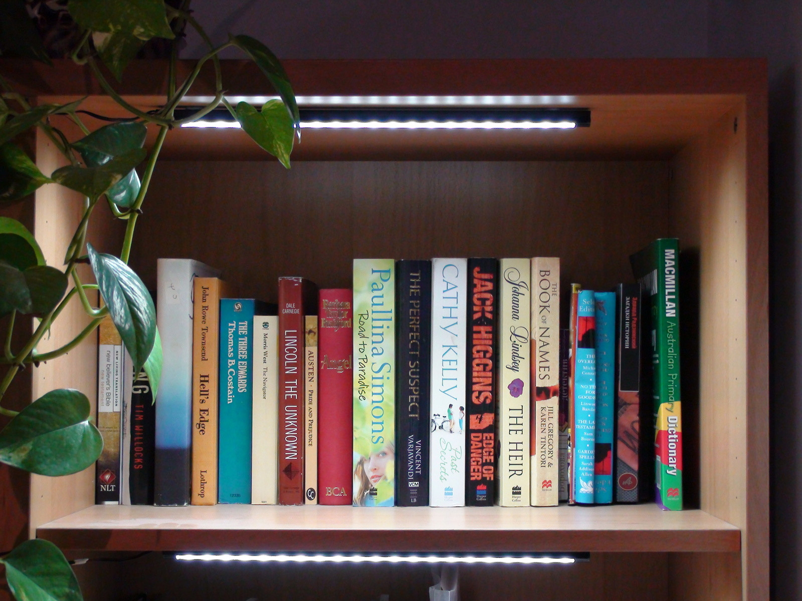 cabinet-light.jpg