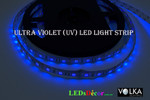 Flexible LED Strip SMD 5050 60pcs/m Ultraviolet (UV) Waterproof 12V