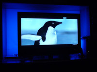 Jumbo Ambient Back Light For Tv Or Home Theater Rgb Kit