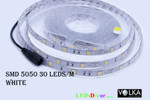 SMD 5050 30pcs/m Water Resistant 12V