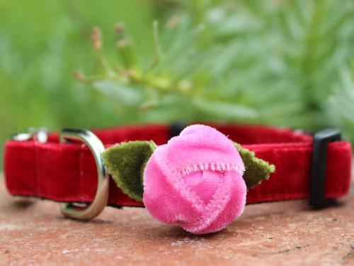 Rosebud Red Velvet dog Collar - by Diva-Dog.com