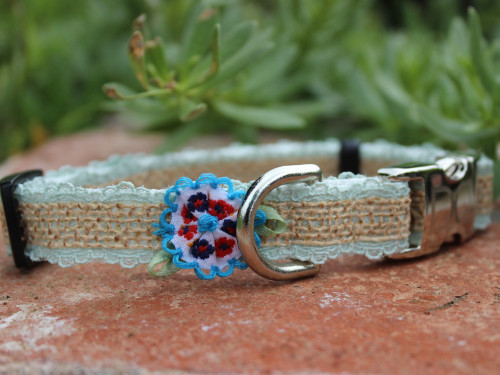Bailey dog Collar - by Diva-Dog.com shown in blue