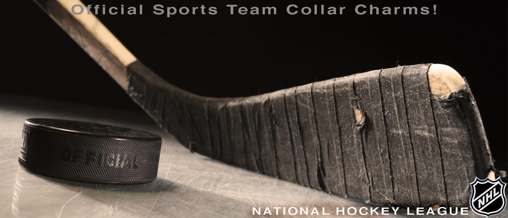 hockeyheader.jpg