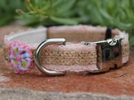 Bailey dog collar shown in Pink