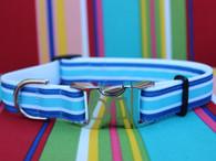 Montauk Mutt dog collar - by Diva-Dog.com