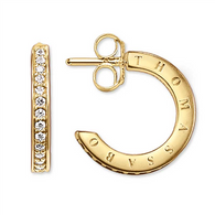 CZ Half Hoop Earrings (TCR579CZY)