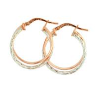 Double Hoop Earrings (14-2060)