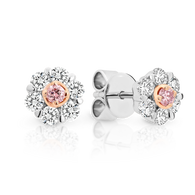 18ct White Gold Pink Argyle Diamond and White Diamond Halo Earrings