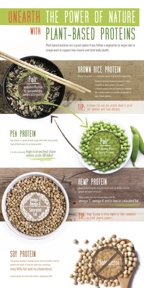 plant-based-infographic-final-475x950.png