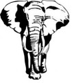 Wall Decals and Stickers-Elephant