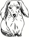 Wall Decals and Stickers – Dog Design Animal