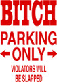 Wall Decals and Stickers –bitch parking