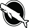 Wall Decals and Stickers –   whale