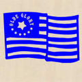 Wall Decals and Stickers - American flag: olde glory (1)
