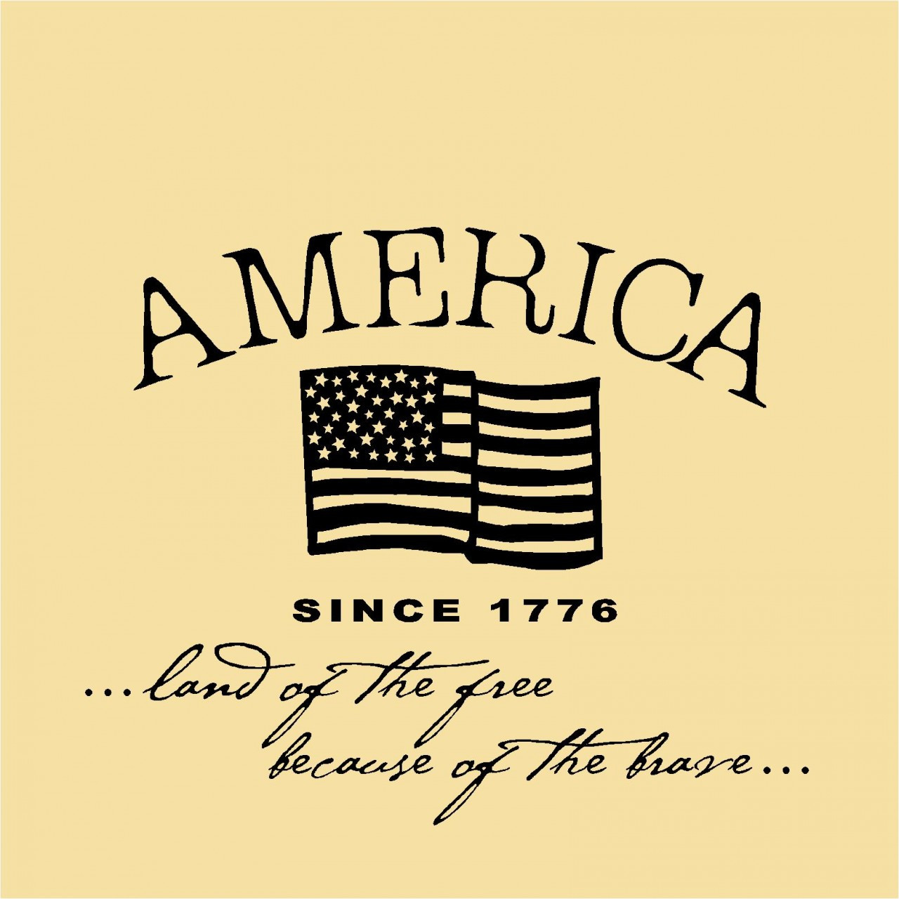 Wall Decals and Stickers - America since 1776 land of the free   (5)