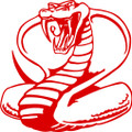 Wall Decals and Stickers –  Cobra