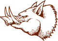 Wall Decals and Stickers –  Boar