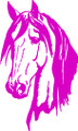 Wall Decals and Stickers –  Horse Head Design.
