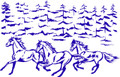 Wall Decals and Stickers –  Horses,