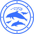 Wall Decals and Stickers – Dolphins*