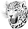 Wall Decals and Stickers - Tiger Face