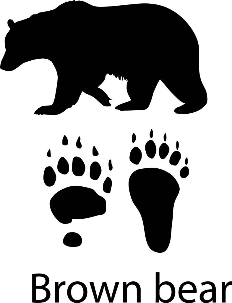 Brown Bear With Paw Print Decal - Animal - Wall Decals & Stickers