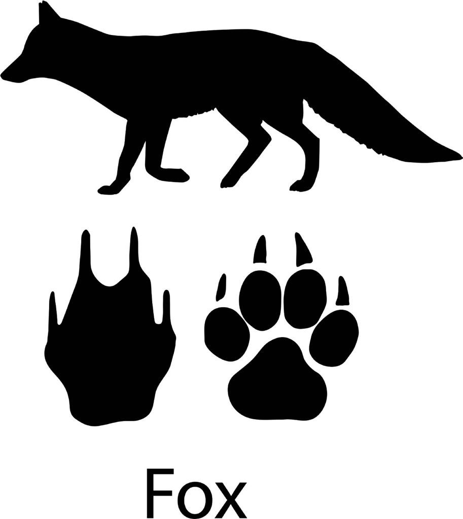 Fox With Paw Print Decal Cool Animal Wall Decals