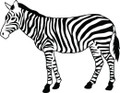 Zebra Decal  -  Trees And Animals For Kids Rooms  -  Wall Decals & Sticker