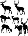 Wall Decals and Stickers - Deer