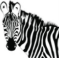 Zebra Animal Picture Art  Home Decor Sticker  Vinyl Wall Decal  21x21
