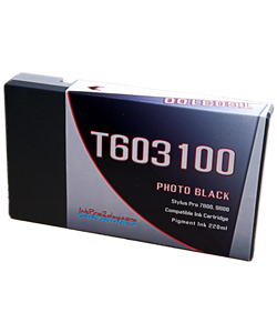 T603100 Photo Black Epson Stylus Pro Ink Cartridge
