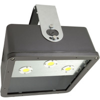 "12"" LED ShoeBay"