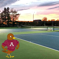350w LED Sports lighting with aluminum light poles and brackets for the Antigo High School Tennis courts