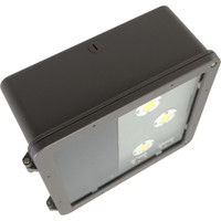 "12"" LED Shoebox"