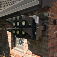 LED Helios light fixture installed for night time entertainment in Dan's backyard