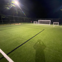 #17685: 350w GT4 LED Fixtures for Soccer Application