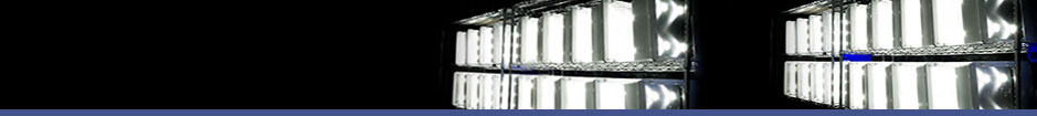 Advanced LED Performance - Commercial Grade LED Fixtures