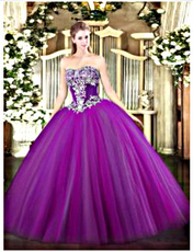 Quinceanera Dress  QSJQDDT1453002