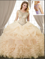 Quinceanera Dress # QSJQDDT862002