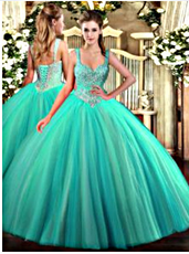 Quinceanera Dress QSJQDDT1299002