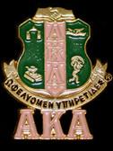 AKA Shield Lapel Pin