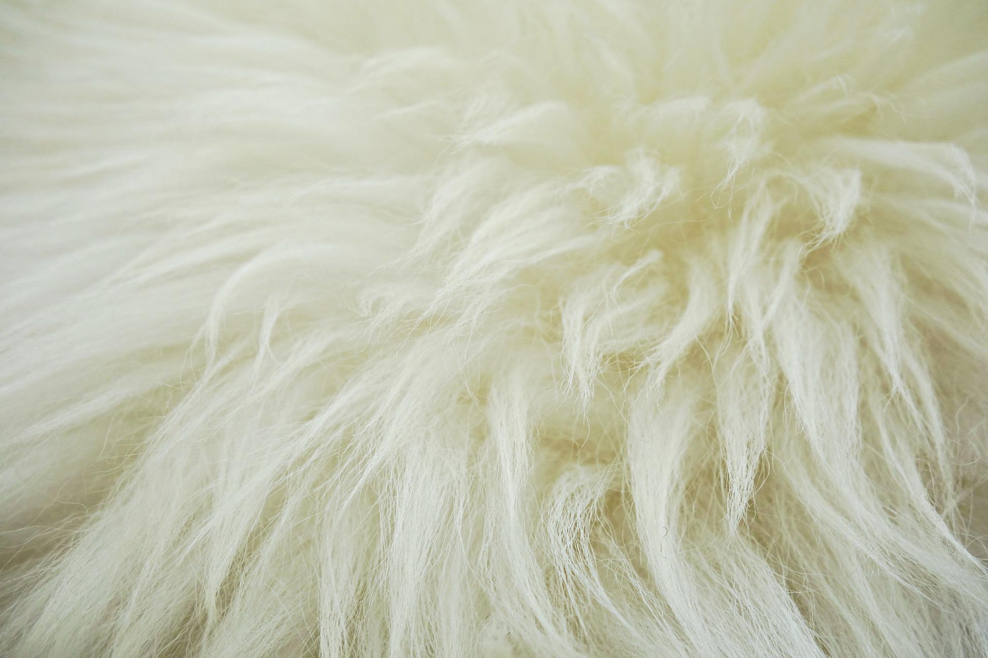 fleece-1524448-1920.jpg