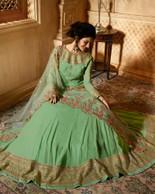 Elegant Dress in light green color