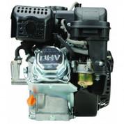 212cc Predator Gas Engine 6.5HP