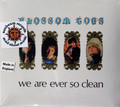 Blossom Toes - We Are Ever So Clean (10 bonus tracks)
