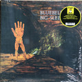 Big Sleep - Bluebell Wood  lp reissue  180 gram vinyl with press release replica and cd