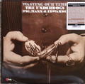 Underdogs Blues Band - Wasting Our Time lp reissue