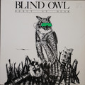 Blind Owl - Debut at Dusk  original US private  pressing prog  lp  1 copy